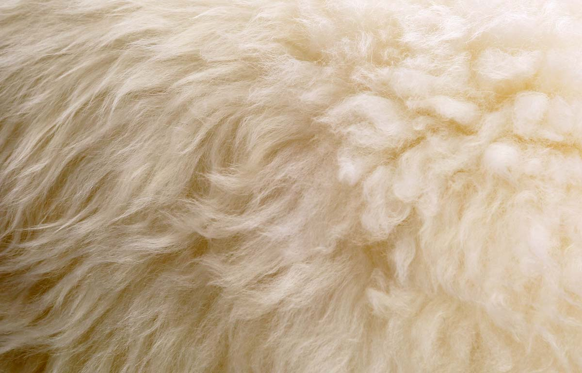 Easy Sheepskin Care