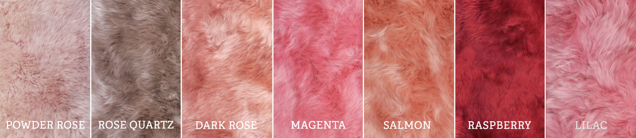 Longwool Pinks